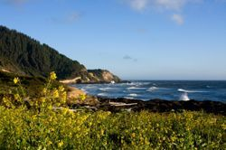 The Oregon coastline is seen with crashing waves