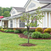 Broadmore Assisted Living at Johnson City