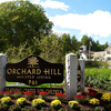 Orchard Hill - Sudbury
