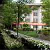 The Village Senior Living