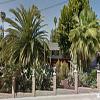 Twin Oaks Garden