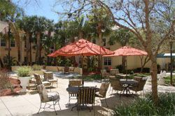 Stratford Court of Palm Harbor, FL - Patio